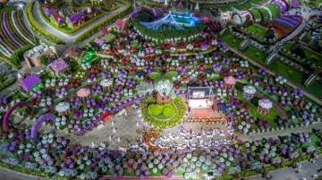Dubai Miracle Garden earned a Guinness World Record for its 18 m Mickey Mouse floral sculpture