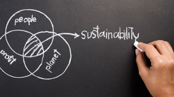 Strong Sustainability Performance by UAE Companies