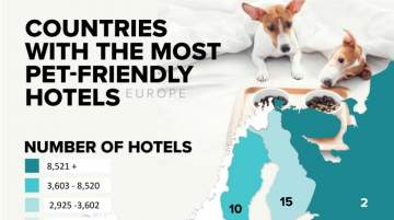 Europe: Where to go When Travelling with Pets