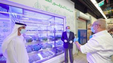 Majid Al Futtaim launched Dubai's first in-store hydroponic farm